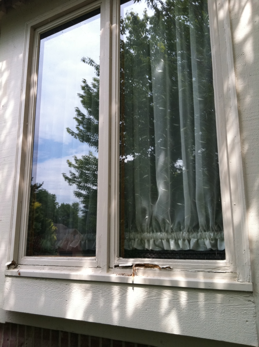 Replacement Windows Jeld Wen Replacement Window Parts